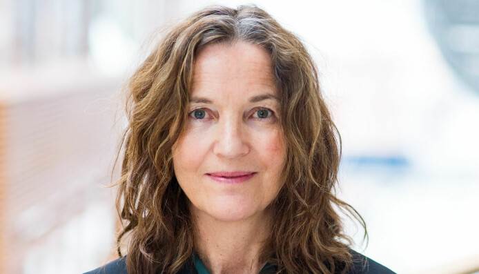 Irina Eidsvold-Tøien sier at krav om erstatning kan i verste fall bli konsekvensen om en bedrift bruker bildene ulovlig.
