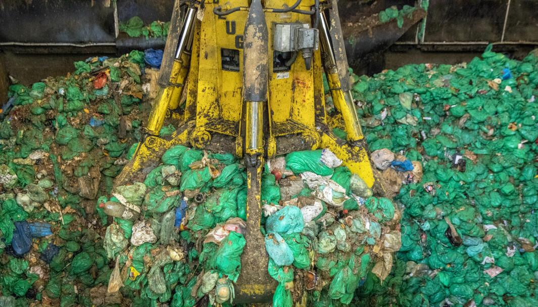Illustrasjonsbilde: gjenvinning, kildesortering, miljøtiltak, avfall, grønne poser, Foto: Ole Berg-Rusten / NTB