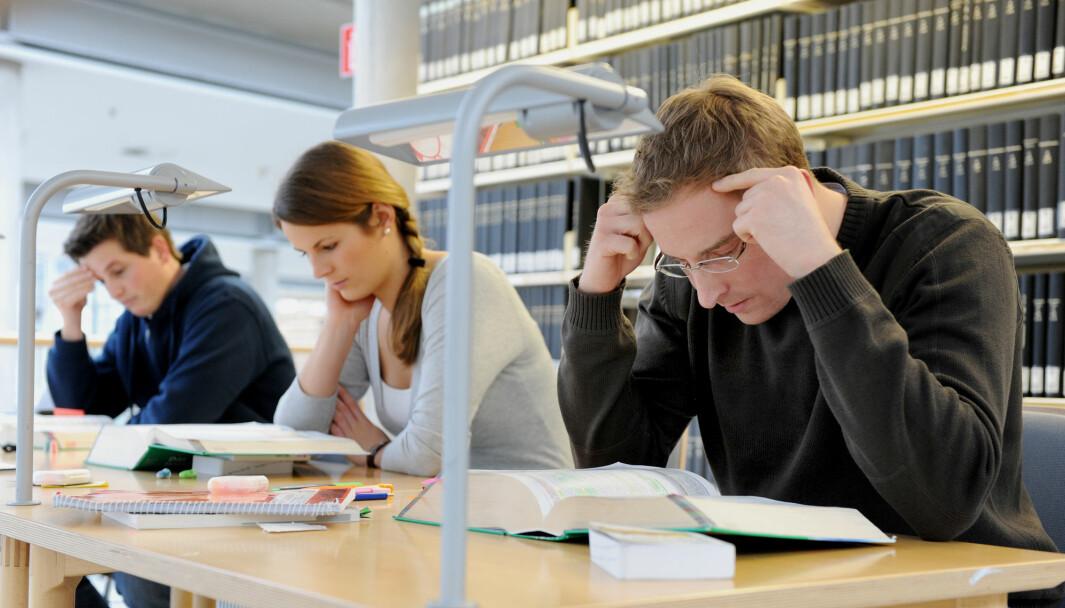 Illustrasjonsbilde: Kvinne og to mannlige medstudenter sitter konsentrert over pensumbøkene sine. Foto: Frank May / NTB