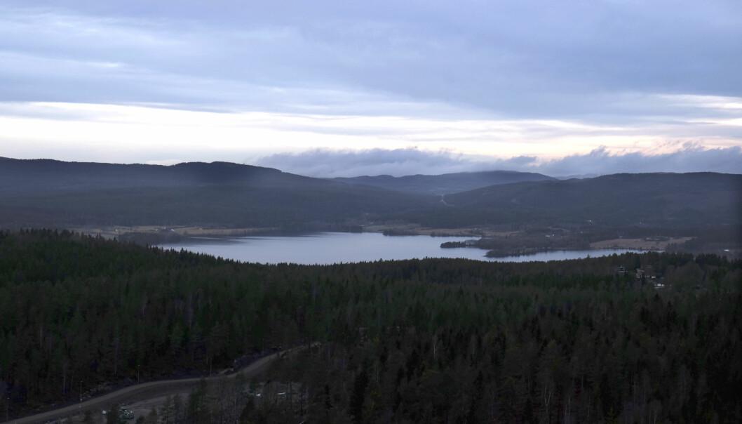 Maridalsvannet er den største innsjøen i Oslo kommune, plassert i Maridalen, mellom Nordmarka og Lillomarka. Vannet er Oslos viktigste drikkevannskilde og dekker ca. 90 prosent av Oslos vannforbruk.